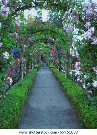 Passage ornate with roses forming multiple archs - stock photo