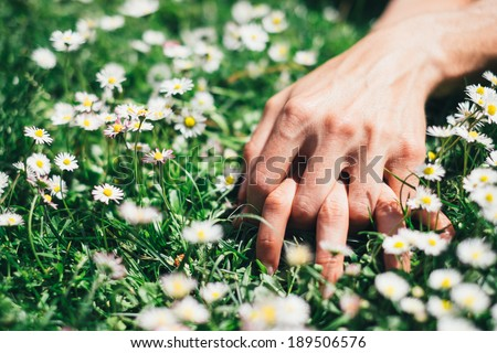 Passion and love on spring concept. Lovers hands on flowers and grass  field. - stock photo