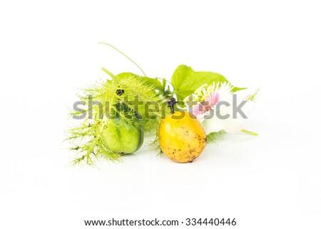 Passion fruit on white background, Isolate passion fruit. - stock photo