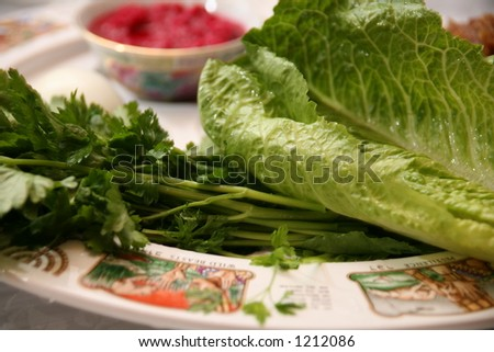 Passover seder plate - stock photo