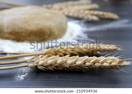 Pasta in flour and wheat - stock photo