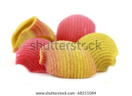 Pasta multicolor lovely shell shaped