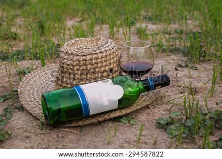 Paste decanter and wine glasses. - stock photo