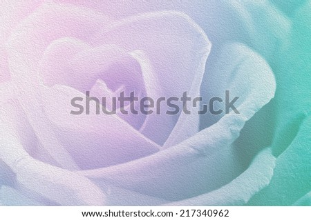 Pastel rose in soft and blurred style for background
