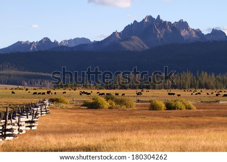 Pastoral scene of the Sawtooth Mountain area near Stanley, Idaho - stock photo