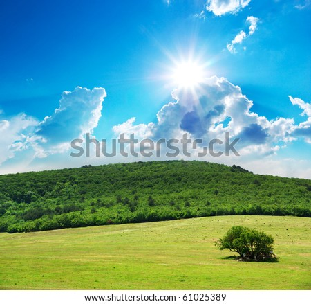 Pasture and sunny sky. Nature composition. - stock photo