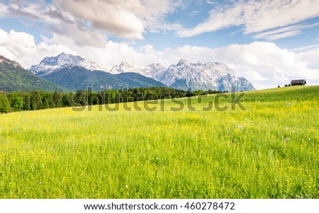 Pasture in the Karwendel mountains of the alps in Bavaria (Germany) - stock photo