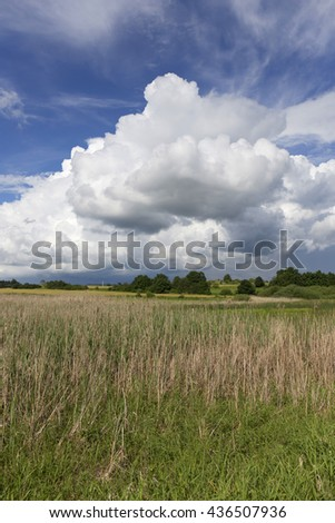 Pasture in the storm summer country Landscape - stock photo