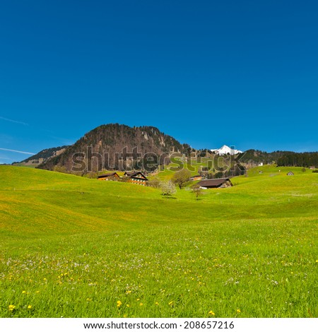 Pasture on the Background of Snow-capped Alps, Switzerland - stock photo