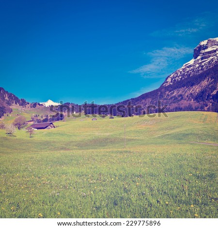 Pasture on the Background of Snow-capped Alps, Switzerland, Instagram Effect - stock photo