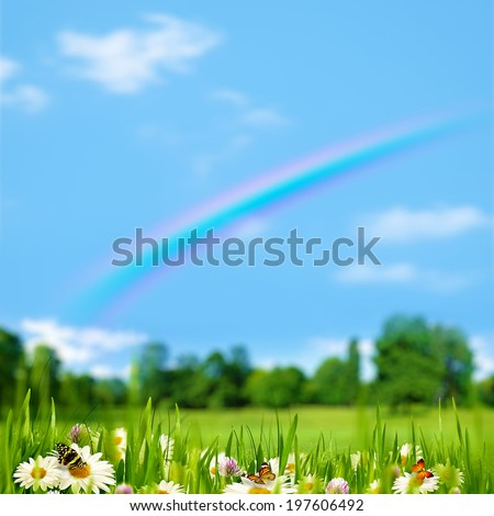 Pasture rural landscape with beauty flowers, butterfly and rainbow