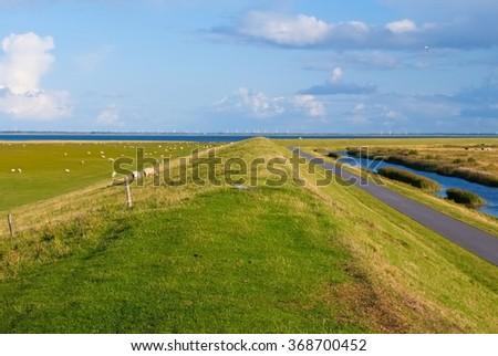 Pastures on Mando island  - stock photo