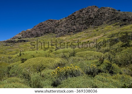 Patagonia Landscape - stock photo
