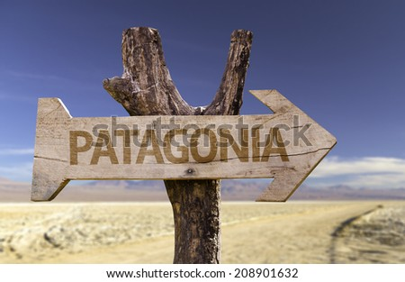 Patagonia wooden on desert background - stock photo