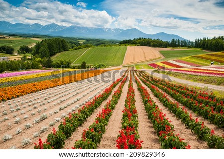 Patchwork by flowers - stock photo
