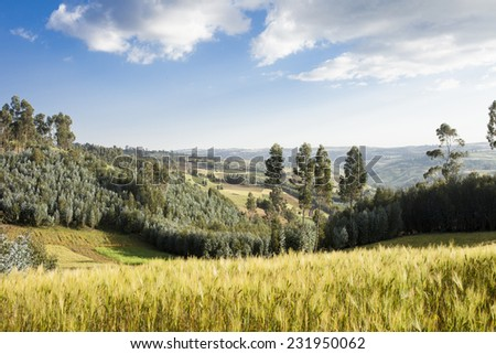 patchwork of farmland and forest in the highlands of Ethiopia - stock photo