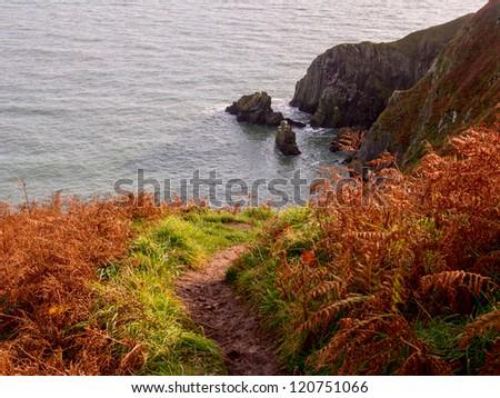 Path across Cliffs near Howth town. Ireland. - stock photo