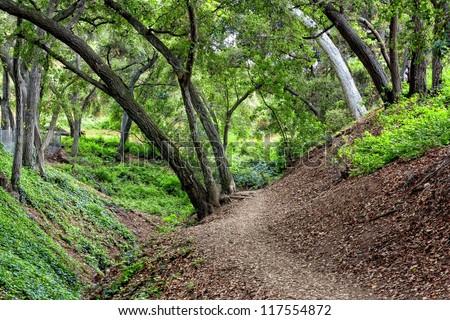 Path Along Cherry Canyon Park Near La Canada Flintridge, California - stock photo