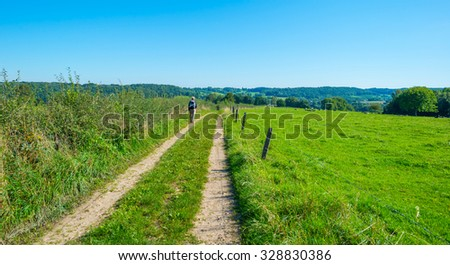 Path along fields and trees in summer - stock photo