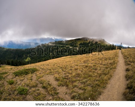 Path along ridge curves into trees and out into foggy mountainscape - stock photo