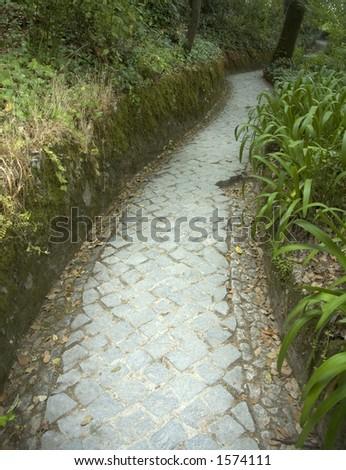path in a garden - stock photo