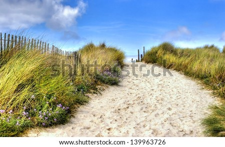 path in the dunes going to the seaside - stock photo