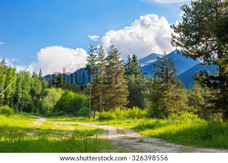Path in the woods. Mountains, clouds and green trees  in summer - stock photo