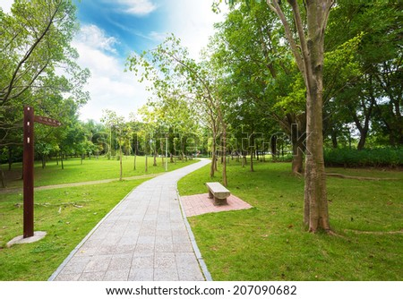 Path leading through forest on a sunny late afternoon - stock photo