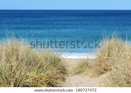 Path leading through sand dunes to the beach at Matai bay, New Zealand. - stock photo