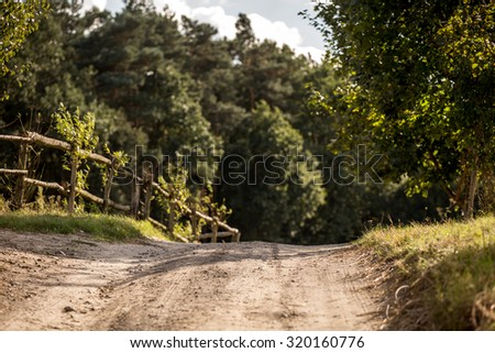path to the woods - stock photo