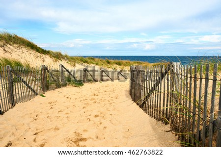 Footpath Through Dune Dutch Coast Stock Photo 193744325