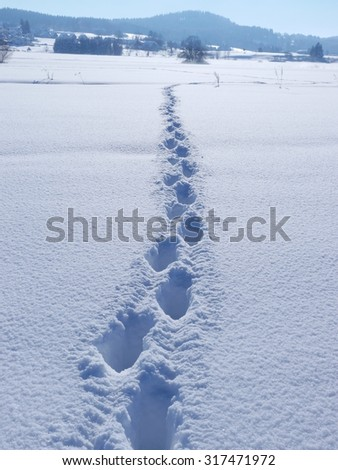 path with shoe prints in winter landscape - stock photo