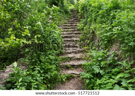 path with stairs in a park