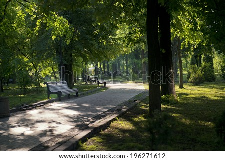Pathway and benches surrounded by trees in the sunny park - stock photo