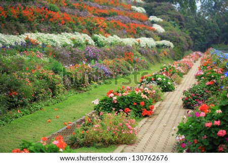 Pathway and flowers in the park