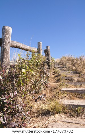 Pathway and wooden railing on  at viewpoint of Doi Inthanon nati
