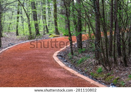 Pathway for walking or jogging sport exercise activity in forest. - stock photo