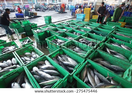 PATTANI, THAILAND -MAY 5:fishery business in pattani fishery port. MAY 5, 2015 pattani, THAILAND  - stock photo