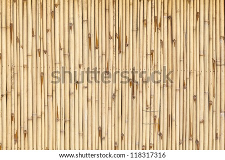 pattern of bamboo background in yellow color - stock photo