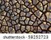 Pattern of cracked and dried soil under the Sun - stock photo