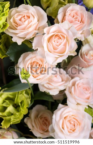 Pattern of delicate spray roses and green eustoma flowers. Studio