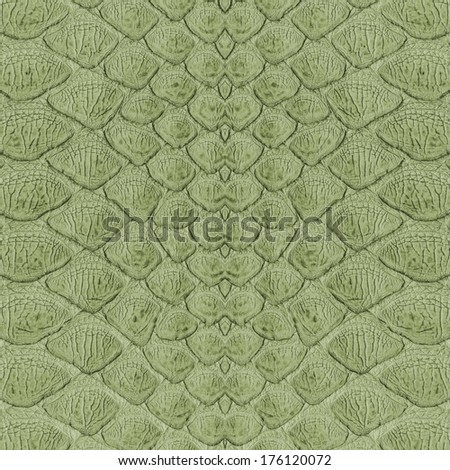 pattern of green snake skin closeup   - stock photo