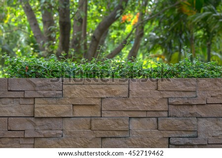 Pattern of Grunge Brick Wall and Green Ornamental Trees. Garden Decorative , Soft Focus