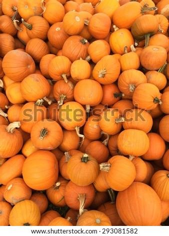 Pattern of Multiple Small Pumpkins