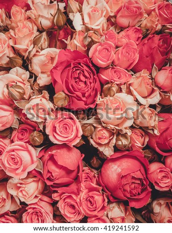 Pattern of natural flowers background texture - stock photo
