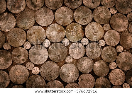 Pattern of several chopped wooden trunks in a pavement - stock photo