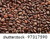 pattern of the cocoa beans background - stock photo