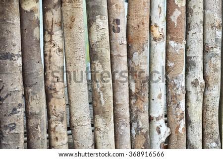pattern on logs background - stock photo