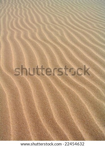 Pattern on the sand formed by wind. Slowinski National Park in Poland. - stock photo
