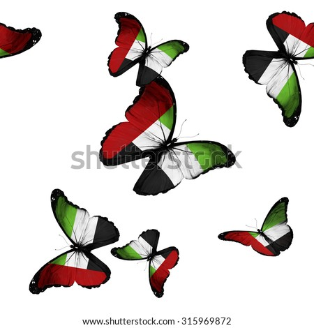 Pattern with flying United Arab Emirates butterflies - stock photo